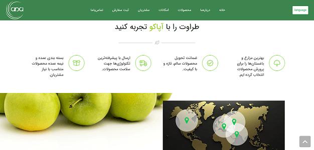طراحی سایت برند آپاکو